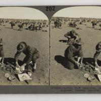 https://repository.erc.monash.edu/files/upload/Rare-Books/Stereographs/WWI/Keystone/kvc-032.jpg