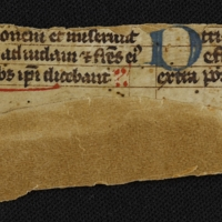 Fragment no. 17 - Bischoff Manuscript Collection