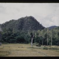 https://repository.erc.monash.edu/files/upload/Asian-Collections/Myra-Roper/thailand-02-148.jpg