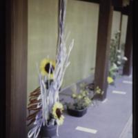 https://repository.erc.monash.edu/files/upload/Asian-Collections/Myra-Roper/japan-024.jpg