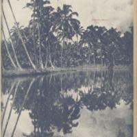 https://repository.monash.edu/files/upload/Asian-Collections/Sin-Po/ac_1930_11_01.pdf