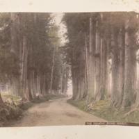https://repository.erc.monash.edu/files/upload/Rare-Books/Japanese-Albums/jp-03-001.jpg