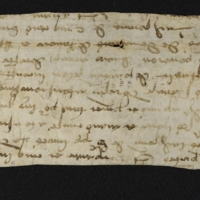 Fragment no. 25 - Bischoff Manuscript Collection