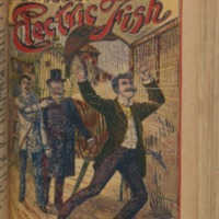 Frank Reade's Electric Fish