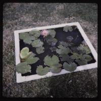 https://repository.erc.monash.edu/files/upload/Asian-Collections/Myra-Roper/thailand-03-051.jpg