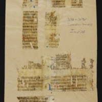 Fragment no. 20 - Bischoff Manuscript Collection