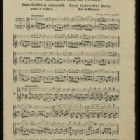 Leichte instruktive Duos für 2 Flöten, zur Bildung reiner Intonation und des Vortrages, op. 507Noten / von Wilh. Popp.
