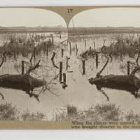 https://repository.erc.monash.edu/files/upload/Rare-Books/Stereographs/WWI/Realistic-Travels/rtp-005.jpg