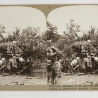 https://repository.erc.monash.edu/files/upload/Rare-Books/Stereographs/WWI/Realistic-Travels/rtp-004.jpg