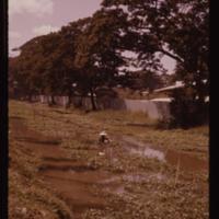 https://repository.erc.monash.edu/files/upload/Asian-Collections/Myra-Roper/thailand-02-124.jpg