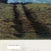 https://repository.monash.edu/files/upload/Caulfield-Collection/art-catalogues/ada-exhib-catalogues-1342.pdf