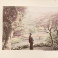 https://repository.erc.monash.edu/files/upload/Rare-Books/Japanese-Albums/jp-02-018.jpg