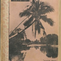 https://repository.monash.edu/files/upload/Asian-Collections/Sin-Po/ac_1935_05_11.pdf