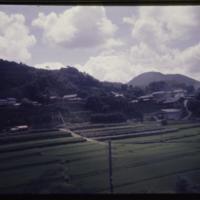 https://repository.erc.monash.edu/files/upload/Asian-Collections/Myra-Roper/japan-052.jpg