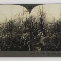 https://repository.erc.monash.edu/files/upload/Rare-Books/Stereographs/WWI/Keystone/kvc-030.jpg
