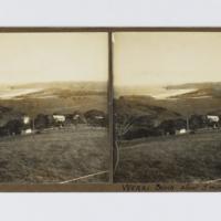 https://repository.erc.monash.edu/files/upload/Rare-Books/Stereographs/Aust-NZ/anz-084b.jpg