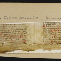 Fragment no. 16 - Bischoff Manuscript Collection