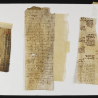 Fragment no. 26 - Bischoff Manuscript Collection