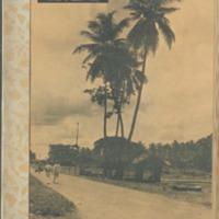 https://repository.monash.edu/files/upload/Asian-Collections/Sin-Po/ac_1935_03_16.pdf