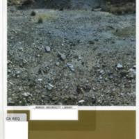 https://repository.monash.edu/files/upload/Caulfield-Collection/art-catalogues/ada-exhib_catalogues-264.pdf