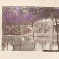 https://repository.erc.monash.edu/files/upload/Rare-Books/Japanese-Albums/jp-02-016.jpg